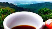 Tour privado: café en las montañas de Armenia, Armenia, Private Sightseeing Tours