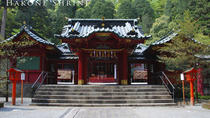 Custom Private Tour in Hakone with Optional Hot Springs Experience