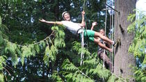 Canopy Tree Climbing at Deception Pass State Park, Seattle, Climbing