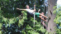 Canopy Tree Climbing on Bainbridge Island, Seattle, Climbing