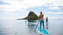 Mahina Hawaii Adventures , Maui, Half-day Tours