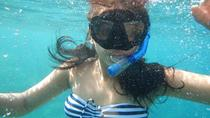 Snorkeling Tour by the Roqueta Island in Acapulco, Acapulco
