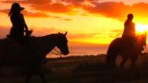Bubbles and Chocolate Sunset Ride, Maui, Horseback Riding