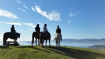 Guided Horse Trekking from Rotorua , Rotorua, Horseback Riding