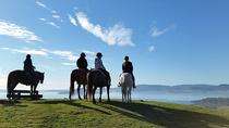 Horse Trekking from Rotorua, Rotorua, 4WD, ATV & Off-Road Tours