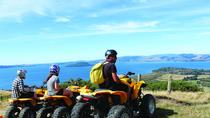 Quad Biking Adventure from Rotorua , Rotorua, 4WD, ATV & Off-Road Tours