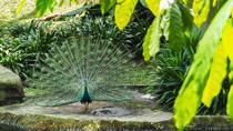 Parks & Gardens, Kuala Lumpur, Attraction Tickets