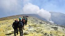 Etna Summit Excursion, Catania, Day Trips