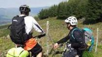 Etna and Nebrodi in MTB from Catania, Catania, Multi-day Tours