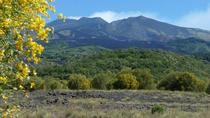 Etna Nature and Flavors Half-Day Tour from Catania, Catania, Day Trips