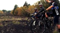 MTB tour Etna and Catania, Catania, Day Trips