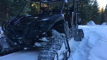 Devils Peak Snow Track Tour, Yosemite National Park, 4WD, ATV & Off-Road Tours