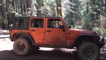 Off-Road Giant Sequoia 4x4 Tour, Yosemite National Park, 4WD, ATV & Off-Road Tours
