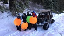 Snow Track and Sledding Tour, Yosemite National Park, 4WD, ATV & Off-Road Tours