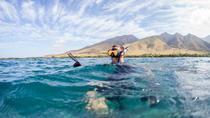 Spearfishing in West Maui, Maui, Fishing Charters & Tours