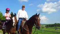 Horseback Riding in Lacombe, Alberta , Alberta, Horseback Riding