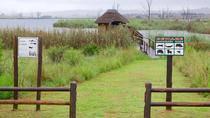 Rietvlei Nature Reserve half-day tour from Pretoria, Pretoria, Cultural Tours