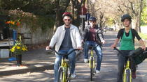 6-Hour Bike Tour from Buenos Aires to Tigre, Buenos Aires, Bike & Mountain Bike Tours