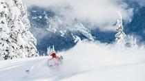 Advanced Backcountry Snowmobile Expedition, Whistler, Ski & Snow