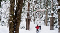 Medicine Trail Snowshoe Tour, Whistler, Ski & Snow