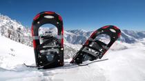 Whistler Snowshoe Adventure, Whistler
