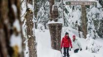 Whistler Snowshoe Adventure, Whistler, Ski & Snow