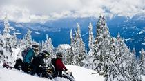 Whistler Wilderness Snowmobile Run, Whistler, Ziplines