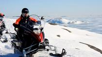 Half-Day Snowmobile Safari including Lunch in Helsinki Archipelago, Helsinki, null