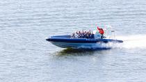Helsinki Shore Excursion: Private Helsinki Archipelago High-speed Boat Cruise, Helsinki