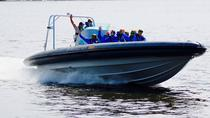 Helsinki Shore Excursion: Private Helsinki Archipelago High-speed Boat Cruise