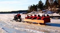 Private Snowmobile Sleigh Tour in Helsinki Archipelago Including Lunch, Helsinki, Ski & Snow