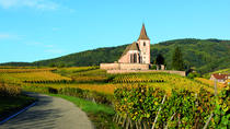 Alsace Full Day Wine Tour from Colmar, コルマール