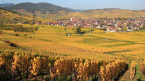 Alsace Half Day Wine Tour from Colmar, Colmar, Wine Tasting & Winery Tours