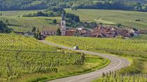 Alsace Wine Route: Half-Day Tasting Tour from Strasbourg, Strasburgo