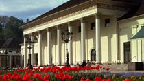 Discover Baden Baden and savor the famous Black Forest cake, Strasbourg, Day Trips