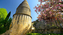 Small-Group Dordogne Day Tour from Sarlat, Bergerac, City Tours