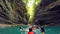 CEBU CANYONEERING PLUS WHALE SHARK WATCHING, Cebu, Day Cruises