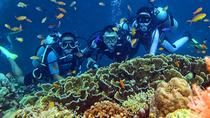 CEBU FUN DIVE (SHARED), Cebu, Other Water Sports