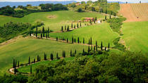 Private Siena and San Gimignano Tour with Wine Tasting From Rome, Rome, Day Trips