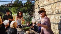 Provence cooking class in a rustic farmhouse, Aix-en-Provence, Cooking Classes
