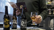 Zaragoza Craft beers tasting in ancient town, Zaragoza, Food Tours