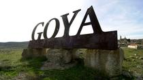 Zaragoza Full day wine excursion and visit Goya birthplace, Zaragoza