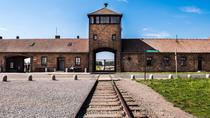 Auschwitz-Birkenau Tour from Krakow, Krakow, Day Trips