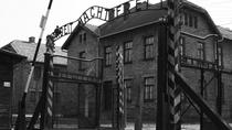 Day Trip to Auschwitz-Birkenau and Wieliczka Salt Mine from Krakow including Lunch, Krakow, Day ...