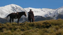 2 horas River Trail Horse Trek, Christchurch