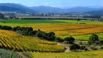 Casablanca Valley Wine Tasting Including 4 Vineyards, Santiago, Day Trips