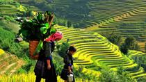2-Night Sapa Tour from Hanoi, Hanoi, Multi-day Tours