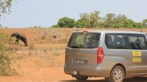 Private Departure Transfer: Southern Kruger Accomodations to Skukuza Airport, Kruger National Park, ...