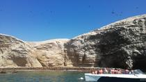 All Inclusive Ballestas Islands and Nazca Lines from Lima, Lima, 4WD, ATV & Off-Road Tours