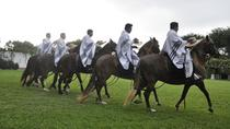 Peruvian Paso Horses Show Including Lunch, Lima, Cultural Tours